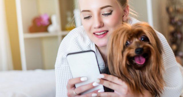 Top 5 des applis les plus utiles pour prendre soin de mon chien
